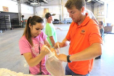Agricultural educator works with student packing a ham